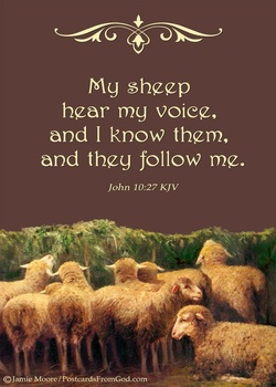 Image result for He calls his own sheep by name and leads them out.""